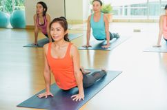 Yoga class in studio room,Group of people doing upward dog poses Stock Images