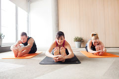 Yoga class. Three people in a yoga class holding a pose Royalty Free Stock Images