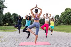 Yoga classes outdoors with multiracial group in different physic. Yoga classes outdoors with multiracial group with different physical shapes. Group is doing stock photos