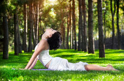Yoga cobra pose in the park. Yoga bhujangasana cobra pose by woman in white costume on green grass in the park around pine trees Stock Image