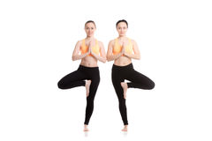 Yoga with companion, Vriksasana pose. Two beautiful sporty girlfriends in orange sportswear practice yoga together, exercise for spine, standing in asana Stock Image
