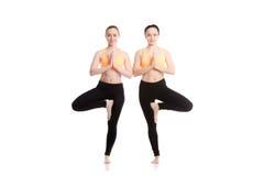 Yoga with companion, Vriksasana pose Stock Image