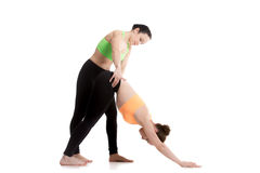 Yoga con el instructor, svanasana del mukha del adho Fotos de archivo