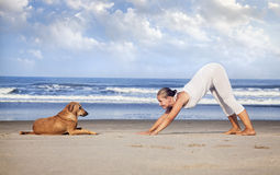 Yoga con il cane in India Immagini Stock