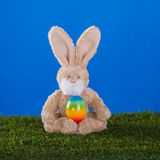 Yoga concept.Teddy rabbit playing sports with him Easter egg. Royalty Free Stock Photo
