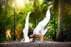 Yoga couple in the garden Royalty Free Stock Image