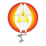 Yoga crane Royalty Free Stock Photography