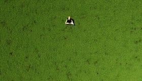 Yoga dans l'herbe illustration libre de droits