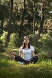 Yoga in de Aard royalty-vrije stock afbeelding
