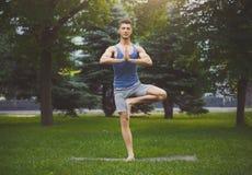 Yoga de formation de jeune homme dans la pose d'arbre dehors photographie stock libre de droits