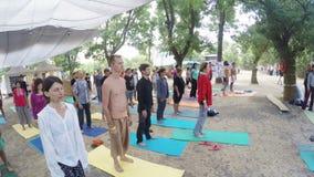 Yoga de hatha de groupe sur le festival ésotérique d'ethno clips vidéos