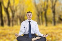 Yoga in de herfstpark Stock Foto