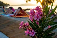 Yoga de la mañana en la playa por el mar fotografía de archivo