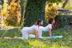 Yoga de la pr?ctica del hombre joven y de la mujer al aire libre en el d?a de verano hermoso de madera foto de archivo libre de regalías