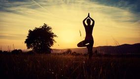 Yoga de pratique de jeune femme sportive sur un pré au coucher du soleil image stock