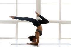 Yoga de pratique de jeune femme attirante de yogi, faisant la position d'appui renversé images stock
