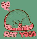 Yoga de rat Photo stock