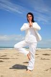 Yoga del asunto Fotos de archivo libres de regalías