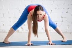 Yoga dentro: El Straddle derecho remite la curva Foto de archivo libre de regalías