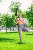 Yoga di addestramento della donna nella posa dell'albero all'aperto Fotografie Stock