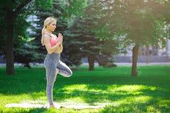 Yoga di addestramento della donna nella posa dell'albero all'aperto Fotografia Stock Libera da Diritti