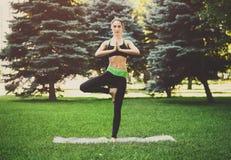 Yoga di addestramento della donna nella posa dell'albero all'aperto Immagine Stock Libera da Diritti
