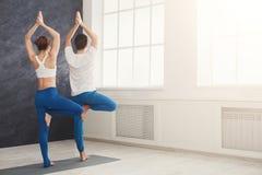 Yoga di addestramento delle coppie nella posa dell'albero Fotografie Stock Libere da Diritti