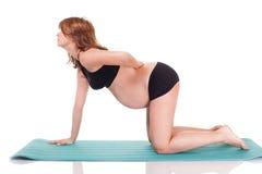 Yoga di forma fisica della donna incinta Fotografia Stock