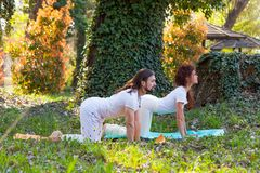Yoga di pratica della donna e del giovane all'aperto nel bello giorno di estate di legno fotografia stock libera da diritti