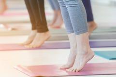 Yoga di pratica della gente in buona salute del gruppo Immagini Stock Libere da Diritti