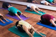 Yoga di pratica della gente positiva Immagine Stock