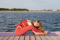 Yoga di pratica della giovane donna nella natura fotografia stock libera da diritti