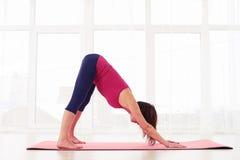 Yoga di pratica della giovane donna rilassata, facente giù la posa del cane Fotografia Stock Libera da Diritti