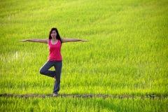 Yoga di pratica della ragazza, levantesi in piedi nel campo di risaia Immagine Stock Libera da Diritti