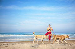 Yoga and dogs. Yoga tree pose by man in red trousers and dogs going in front of him on the beach at ocean background Royalty Free Stock Images