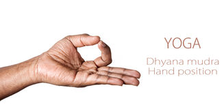 Yoga Dyana mudra. Hand in Dhyana mudra by Indian man isolated at white background. Free space for your text Stock Image