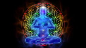 Yoga e meditazione, fiore di simbolo di vita illustrazione vettoriale