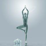 Yoga Мeditation Stock Image