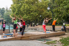 Yoga in einem Park Lizenzfreies Stockbild
