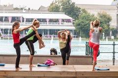 Yoga in einem Park Stockbild