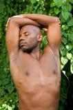 Yoga en Aard Royalty-vrije Stock Afbeeldingen