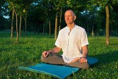 Yoga en el parque Imagen de archivo libre de regalías