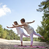 Yoga en nature Image libre de droits