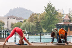 Yoga en parc Photo libre de droits