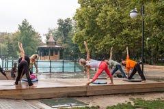 Yoga en un parque Fotografía de archivo