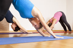 Yoga Exercise. An image of some people doing yoga exercises royalty free stock photography