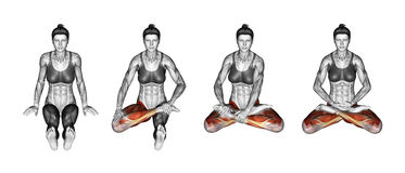 Yoga exercise. Lotus Pose. Padmasana. Female Royalty Free Stock Images