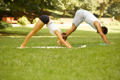 Yoga Exercise. Young couple meditating in Summer Park Royalty Free Stock Photos