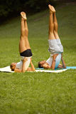 Yoga Exercise. Young couple meditating in Summer Park Royalty Free Stock Images