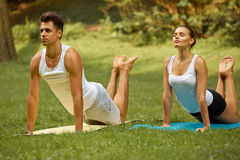 Yoga Exercise. Young couple meditating in Summer Park Stock Images